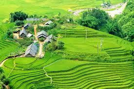 dieu-tra-xu-ly-nhung-nguoi-lien-quan-giup-suc-cho-le-chi-thanh-585